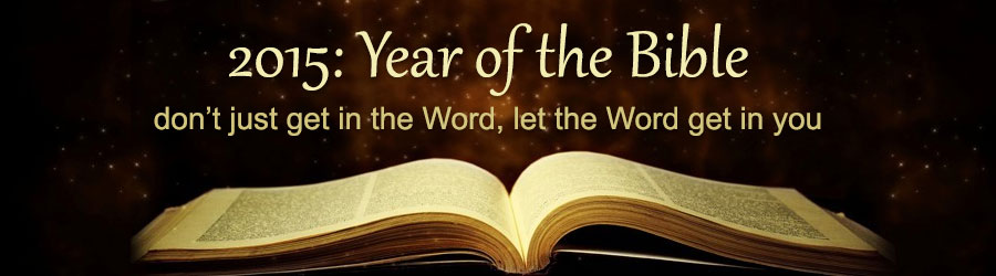 2015 Year Of The Bible